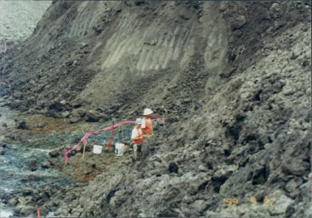 Paleontologist Working At Site